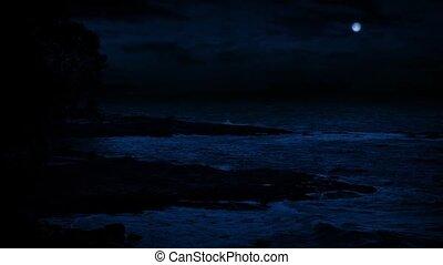 Rugged Beach Shore Under Full Moon