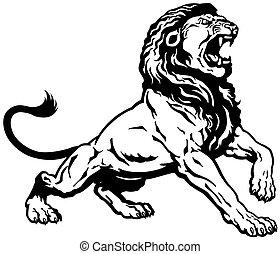 rugido, león, negro, blanco
