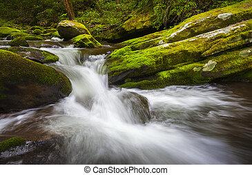 rugido, tenedor, gran montañas llenas humo parque nacional, cascada, gatlinburg, tn, cascadas, en, exuberante, follaje verde