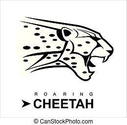 rugindo, cheetah., chita