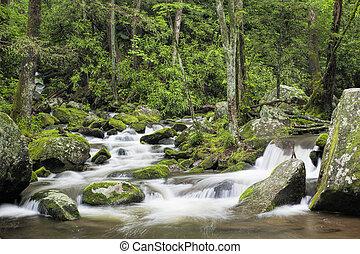 rugindo, garfo, riacho, em, a, grandes montanhas...