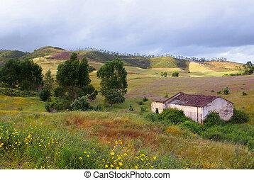 Ruin in Countryside