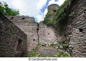 Ruin of the old castle