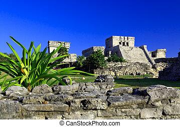 ruinas de tulum, en, el, maya, mundo, cerca, cancun