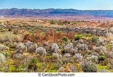 ruinas, de, un, kasbah, en, el, valle, de, rosas, marruecos