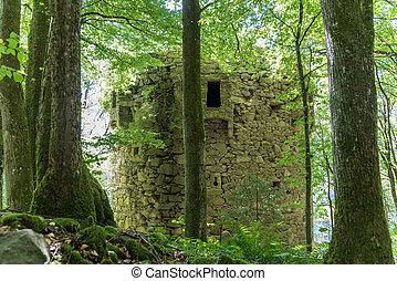 Ruined castle Falkenstein - ruin, Austria