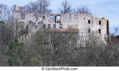 ruinen, hilgartsberg, in, bayern, deutschland