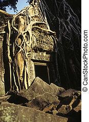 ruins-, ワット, angkor, カンボジア