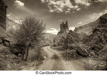 Ruins and Basgo Monastery, Leh, Ladakh, Jammu and Kashmir, India