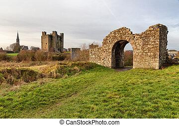 Ruins and church around Trim castle