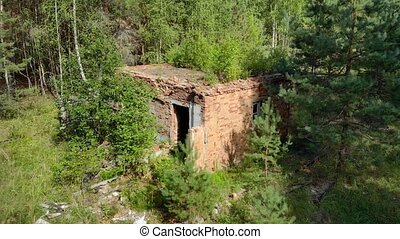 Saplings grow from the roof of a ruined building in the forest, at this abandoned military base in Russia.
