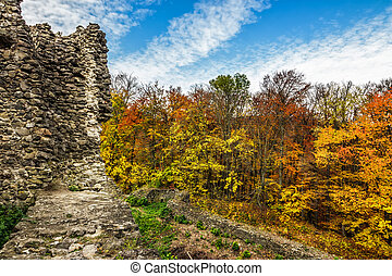 ruins of an old castle in the forest - Stone wall of an old...