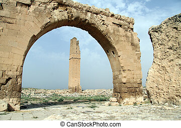 Ruins of Great mosque