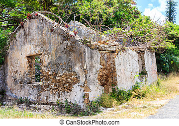 Ruins of house on Iles Des Pines, New Caledonia, SOuth Pacific