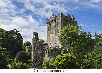 Ruins of medieval castle in Ireland.
