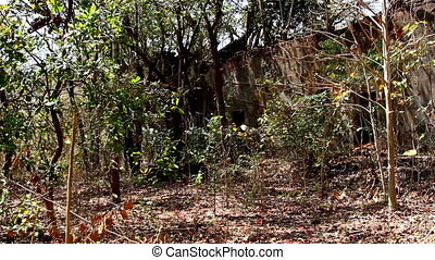 Ruins of Redi fort in Khalchikar at