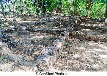 Ruins of slave quarters of sugar mill San Isidro de los Destiladeros in Valle de los Ingenios valley near Trinidad, Cu