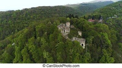 Ruins of the Nevitsky castl. Ukraine.