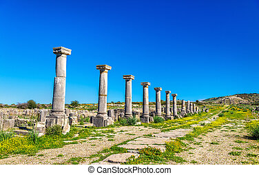 Ruins of Volubilis, a Berber and Roman city in Morocco. ...