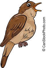 ruiseñor, pájaro, ilustración, caricatura