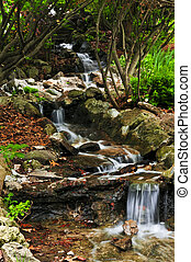 ruisseau, à, chutes d'eau