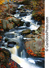 ruisseau, automne