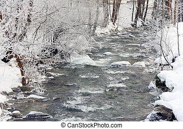 ruisseau, hiver