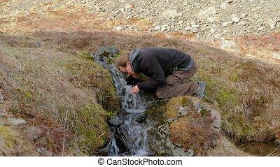 ruisseau, islande, boire