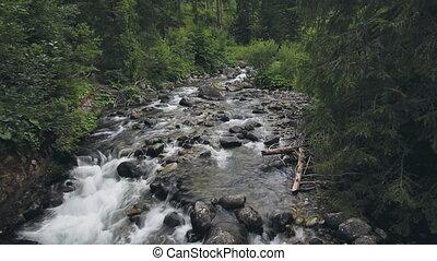 ruisseau, montagne, rivière, bruyant, ruisseau, jeûne, rapides