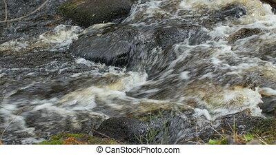 ruisseau, montagne