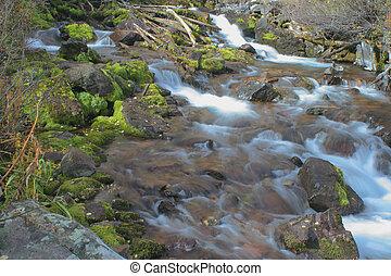 ruisseau, rouge foncé