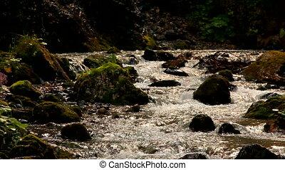 ruisseau