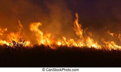 Run away from large burning fire in the field - Run away in...