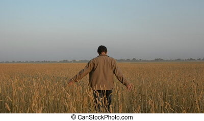 Run back adult male on a wheat field. Farmer in a jacket in...