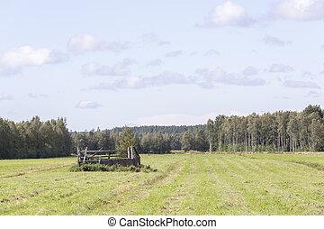Run Down Barn in Cultivated Field.