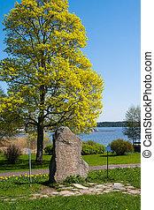 Rune stone. Gripsholm Castle, Marifred, Sweden.