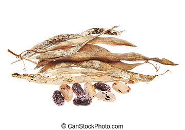 Runner bean seeds and dried husks isolated against white