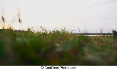 runner man athlete runs on nature near a lake healthy...
