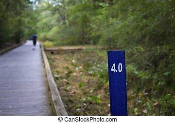 Runner Past Four Mile Walk