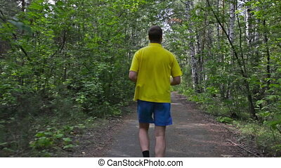 Runner - Rear-view of a single runner in the summer park