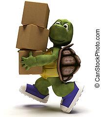 runniing, csomagolás, karikatúra, dobozol, teknősbéka
