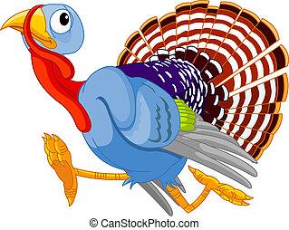 Cartoon turkey running, isolated on white background