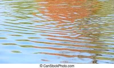 Running colorful ripples on water surface