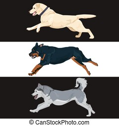 Running dogs collection for your design.