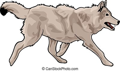 Running gray wolf - Cartoon wolf on white background