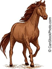 Running horse sketch with brown arabian stallion