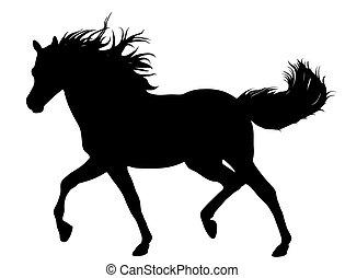 Running Horse  - Black horse silhouette isolated on white