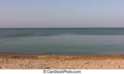 running swimming couple on beach