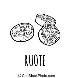 Ruote. Vector vintage engraving black illustration isolated on white background.
