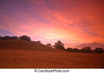 rural afternoon - rural evening landscape after a...